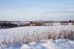 Winter landscape with trees in snow and blue sky. On sunrises Stock Photo