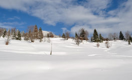 Winter landscape with trees, snow, clouds and blue sky. Winter landscape with trees, snow an clouds stock images