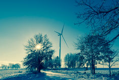 Winter landscape trees snow covered fields windmills Royalty Free Stock Photography