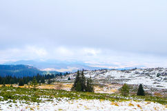 Winter landscape. With trees and snow mountains Royalty Free Stock Photos