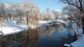 Winter landscape. With the trees which are reflected in water stock video