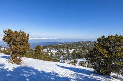Winter landscape in Troodos Mountains, Cyprus Royalty Free Stock Photo