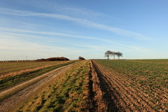 Winter landscape with tumulus and trig point. A winter landscape with a farm track through arable fields to a trig point and trees on a tumulus or ancient burial Stock Photo