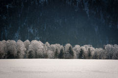 Winter landscape in tyrol Royalty Free Stock Images
