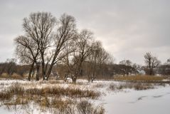 Winter landscape in Ukrainian rural area Royalty Free Stock Images