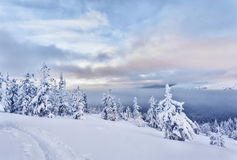 Winter landscape in the Ural mountains. Main Ural ridge pasmurynm day, has seen the sunset paint the snowy slopes, trees under snow, clouds Stock Photos