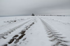 Winter landscape. Winter in the Valley. Winter landscape stock illustration