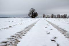 Winter landscape. Winter in the Valley. Winter landscape vector illustration