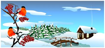 Winter landscape. (Vector) Royalty Free Stock Photo