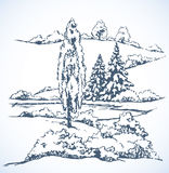 Winter landscape. Vector drawing Stock Photography
