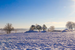 Winter landscape view fields forests covered snow Stock Photo