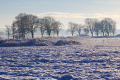 Winter landscape view fields forests covered snow Royalty Free Stock Photography