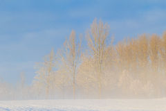 Winter landscape view fields forests covered snow fog Stock Photo