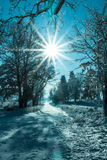 Winter landscape view fields forests covered snow rays sun Royalty Free Stock Images