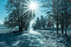 Winter landscape view fields forests covered snow rays sun Stock Image
