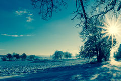 Winter landscape view fields forests covered snow rays sun Stock Images