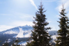 Winter landscape view to the mountain great arber. Bavaria Stock Images
