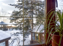 Winter landscape. View from the window pine, arbors, blue, solar sky Stock Photo