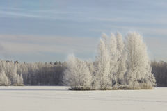 Winter landscape with views of the frozen lake Stock Photography