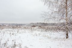 Winter landscape with village, forest, field. Winter landscape with village, forest and field royalty free stock images