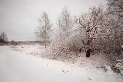 Winter landscape with village, forest and field royalty free stock photo