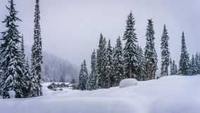 Winter landscape at the village of Sun Peaks. In the mountains with snow covered trees in the Shuswap Highlands of central British Columbia, Canada royalty free stock image