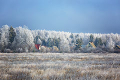 Winter landscape Royalty Free Stock Photography