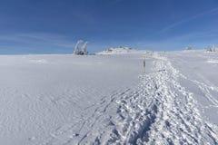 Winter landscape of Vitosha Mountain, Sofia City Region, Bulgaria stock photos