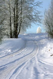 Winter landscape. Way stock photos