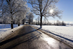 Winter landscape. Landscape with wet road, sun and blue sky Stock Photos