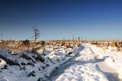 Winter Landscape, windfall Royalty Free Stock Photos