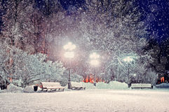 Winter landscape - winter evening in the snowy park with benches under winter snowfall. Stock Photos