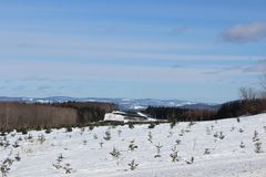 Winter Landscape. With mountains in the Background in the Eastern Townships, Quebec stock image