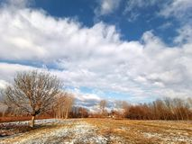 Winter landscape. Winterday field sky nature royalty free stock photos