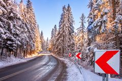Winter road with snowy trees royalty free stock photo
