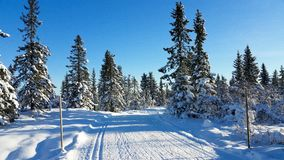Winter landscape. Winter wonderland in Hedmark county Norway. Winter landscape. Winter wonderland. The ground is covered with the white gold. Hedmark county stock photography