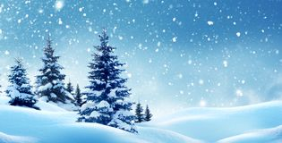 Free Winter  Landscape With Christmas Trees. Royalty Free Stock Photo - 105235935