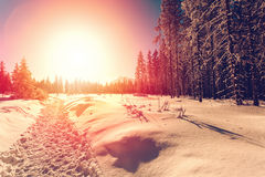 Free Winter Landscape With Setting Sun Royalty Free Stock Photos - 95497968