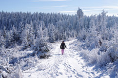 Winter landscape with woman Stock Photos
