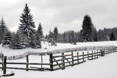 Winter landscape with wooden fence Stock Images