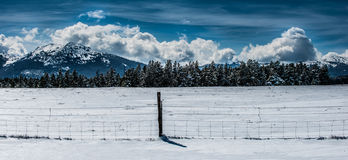 Winter Landscape Wyoming Hazelton Peak Stock Photos