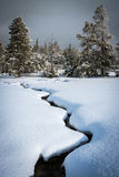 Winter landscape, Yellowstone Royalty Free Stock Image