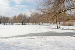 Free Winter Landscape3 Royalty Free Stock Photos - 36548138