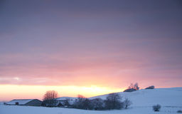 Winter landscapefarm. Winter sunset or sunrise over farm, purpel and red sky or cloud with snow on field and meadow and farm building covered with frost Stock Photos