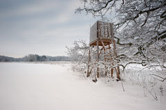 Winter landscapes Royalty Free Stock Image