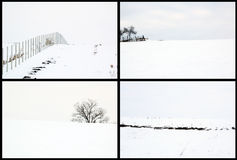 Winter landscapes Royalty Free Stock Photography