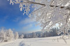 Winter landscape from Bavaria stock photos