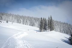 Winter landscapes in the Carpathians stock images