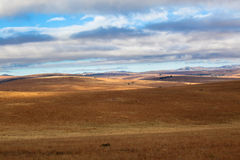 Winter Landscapes Dry Hills. Rolling hills of the African landscape in a dry winter. The grass brown and dry with the hills and low clouds and blue sky popping Royalty Free Stock Photography
