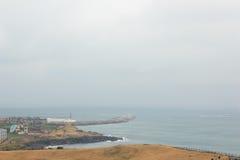 Winter landscapes in Jeju Island. Korea royalty free stock photo
